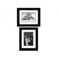 Ansel Adams Moon & Half Dome/Oak Tree Framed Art