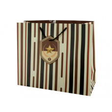 Large Striped Gift Bag with Star Tag