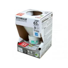 EcoBulb Cool White 65 Watt Equivalent CFL Light Bulb