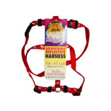 assorted pet harnesses