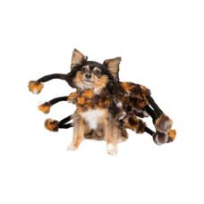 Tarantula Halloween Pet Costume