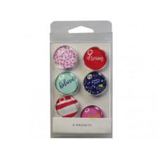 6 Piece Decorative Magnet Set