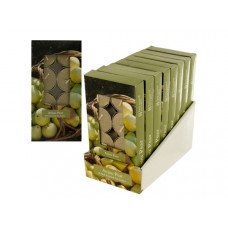 Anjou Pear Scented Tea Lights Countertop Display