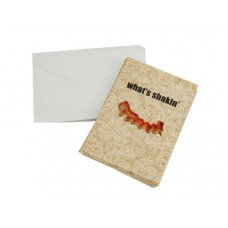 What's Shakin' Bacon Blank Note Cards & Envelopes Set