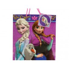 Disney's Frozen Gift Bag