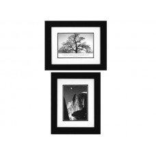 Ansel Adams Moon & Half Dome/Oak Tree Framed Art