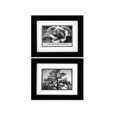 Ansel Adams Oak Tree & Rose Framed Art