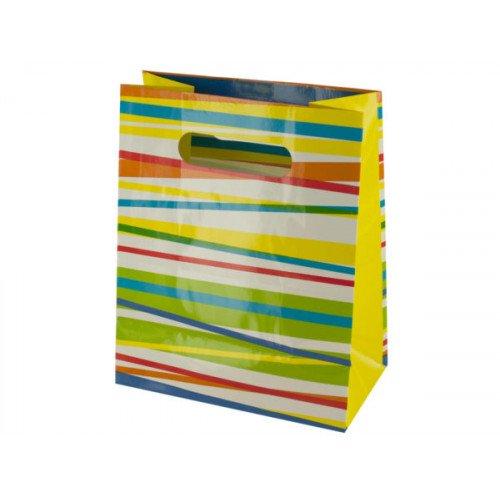 Multi-Color Stripes Gift Bag