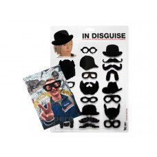 In Disguise Refrigerator Magnets
