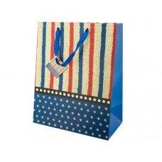 Medium Stars & Stripes Gift Bag