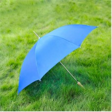 Cheap Umbrella, Blue