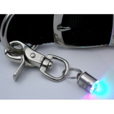 - Pet Safety Light -